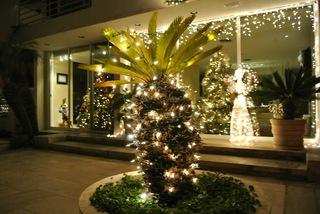 クリスマス/ライトアップ18.jpg