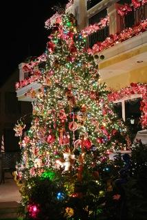 クリスマス/ライトアップ32.jpg